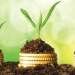 Miért beszélek le Startuppereket a Pre-seed befektetésről?
